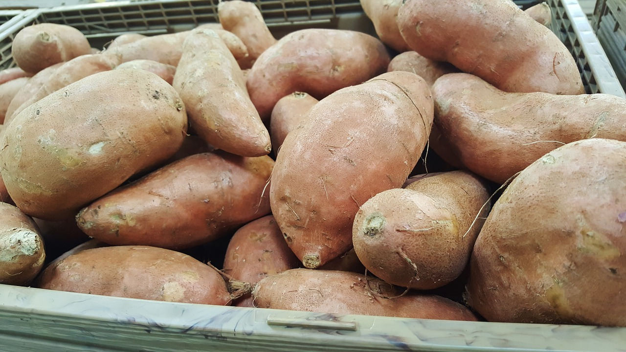 how to cook sweet potato for pregnancy